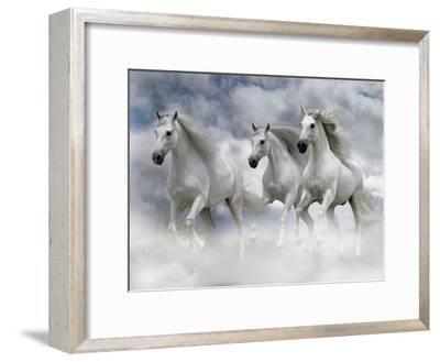 Dream Horses 087-Bob Langrish-Framed Premium Photographic Print