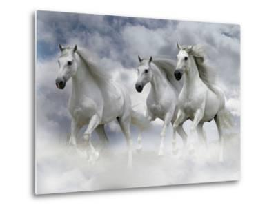 Dream Horses 087-Bob Langrish-Metal Print