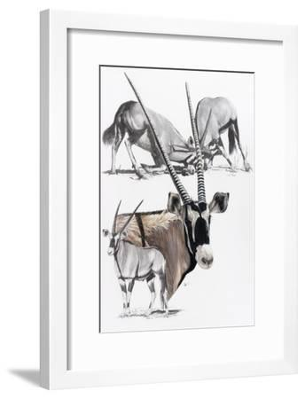 Gemsbok-Barbara Keith-Framed Giclee Print