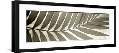 Florison 98-Alan Blaustein-Framed Photographic Print