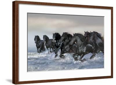 Dream Horses 019-Bob Langrish-Framed Photographic Print