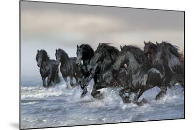 Dream Horses 019-Bob Langrish-Mounted Photographic Print