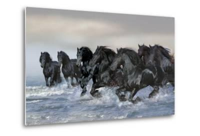 Dream Horses 019-Bob Langrish-Metal Print