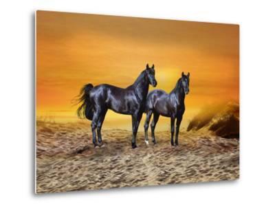 Dream Horses 016-Bob Langrish-Metal Print