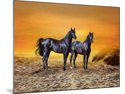 Dream Horses 016-Bob Langrish-Mounted Photographic Print