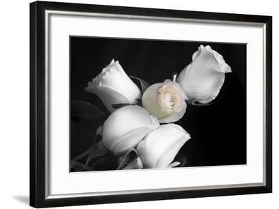 005 Roses BW-Bob Rouse-Framed Photographic Print