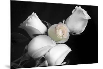 005 Roses BW-Bob Rouse-Mounted Photographic Print