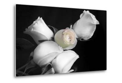 005 Roses BW-Bob Rouse-Metal Print