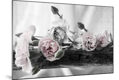 Passion Pink 2 BW-Bob Rouse-Mounted Photographic Print