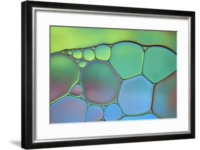 Lime Green and Blue Stained Glass-Cora Niele-Framed Photographic Print