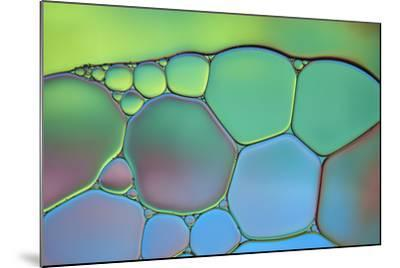 Lime Green and Blue Stained Glass-Cora Niele-Mounted Photographic Print