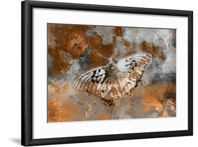 Butterfly II-Fernando Palma-Framed Giclee Print