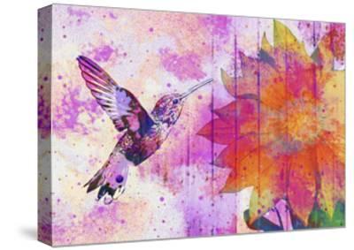 Hummingbird XVII-Fernando Palma-Stretched Canvas Print