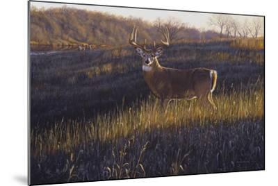 Zone 4-Bruce Miller-Mounted Giclee Print