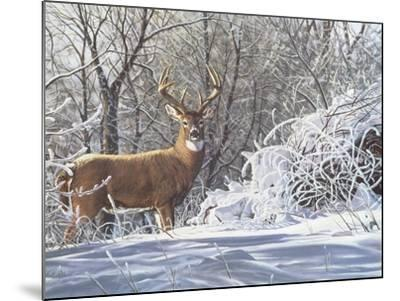 Winter Whitetail-Bruce Miller-Mounted Giclee Print