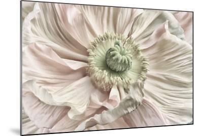 Pink Poppy-Cora Niele-Mounted Photographic Print