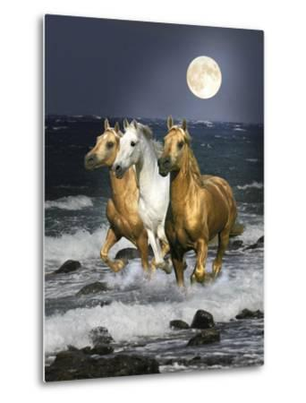 Dream Horses 068-Bob Langrish-Metal Print