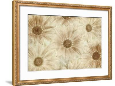 Vintage Daisies-Cora Niele-Framed Photographic Print