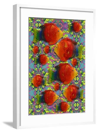 Pop Art Fish-Howie Green-Framed Giclee Print