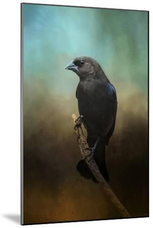Lazy Bird-Jai Johnson-Mounted Giclee Print