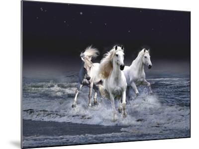 Dream Horses 029-Bob Langrish-Mounted Photographic Print