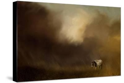 Traveling Through the Storm-Jai Johnson-Stretched Canvas Print