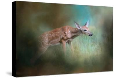 Up the Hill and into the Light-Jai Johnson-Stretched Canvas Print