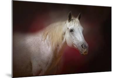 I Am the Light-Jai Johnson-Mounted Giclee Print