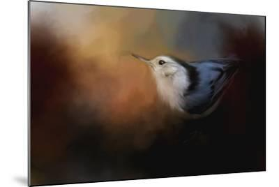Nuthatch in Autumn-Jai Johnson-Mounted Giclee Print