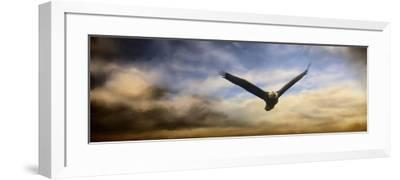 Sunset Flight-Jai Johnson-Framed Giclee Print