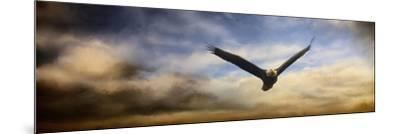 Sunset Flight-Jai Johnson-Mounted Giclee Print