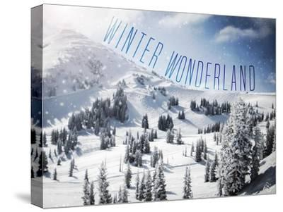 Winter Wonderland-Kimberly Glover-Stretched Canvas Print