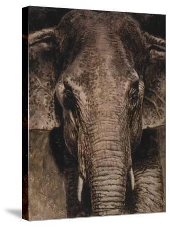 WWL 65121-Michael Jackson-Stretched Canvas Print