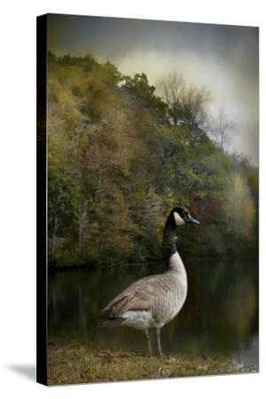 The Canadian Goose-Jai Johnson-Stretched Canvas Print