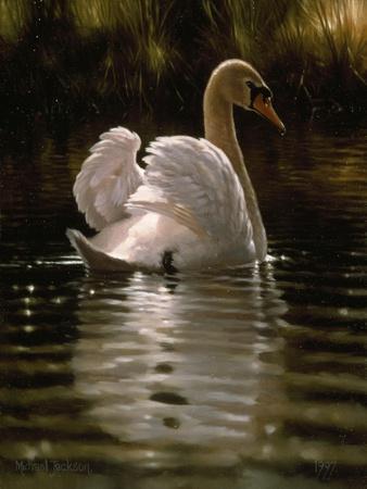 Swan-Michael Jackson-Framed Giclee Print