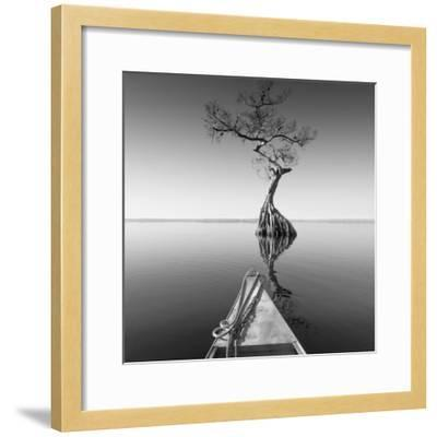 Alone with My Tree-Moises Levy-Framed Photographic Print