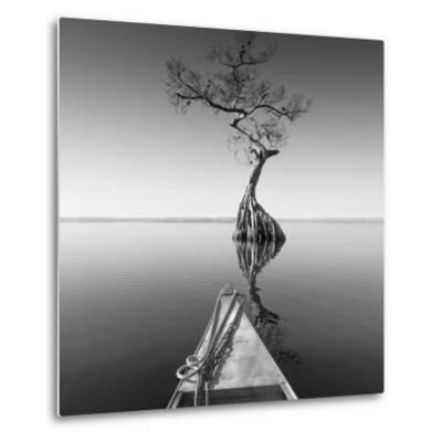 Alone with My Tree-Moises Levy-Metal Print