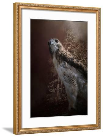 Chickasaw Redtail-Jai Johnson-Framed Giclee Print