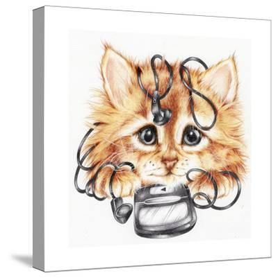 Wired Kitten-Karen Middleton-Stretched Canvas Print