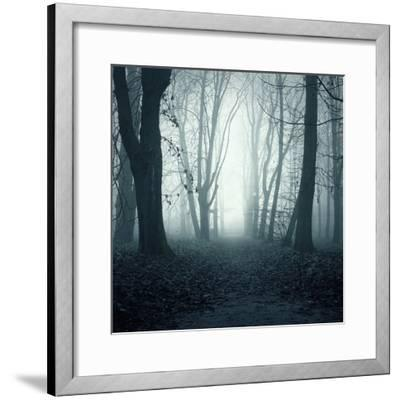 Forest-Mark Ashkenazi-Framed Giclee Print