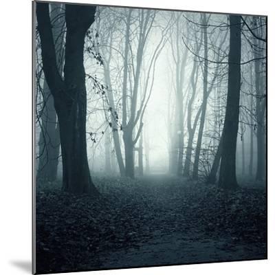 Forest-Mark Ashkenazi-Mounted Giclee Print
