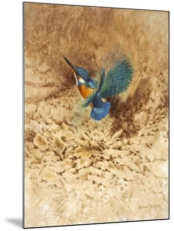 Kingfisher Study-Michael Jackson-Mounted Giclee Print
