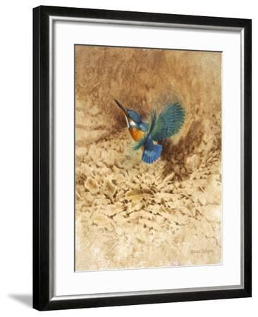 Kingfisher Study-Michael Jackson-Framed Giclee Print