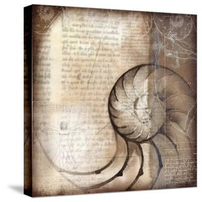 Nautalis I-Kory Fluckiger-Stretched Canvas Print