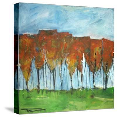 Autumn Patchwork-Tim Nyberg-Stretched Canvas Print