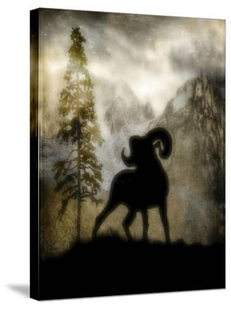 Mystic Big Horn-LightBoxJournal-Stretched Canvas Print