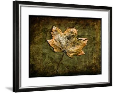 Metallic Leaf 1-LightBoxJournal-Framed Giclee Print