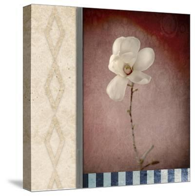 Magnolia Diamond 1-LightBoxJournal-Stretched Canvas Print
