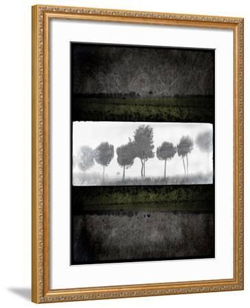 Black Tree 2-LightBoxJournal-Framed Giclee Print