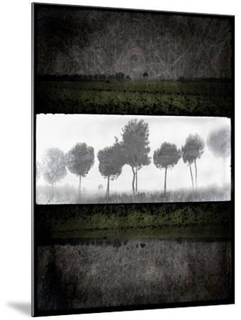 Black Tree 2-LightBoxJournal-Mounted Giclee Print